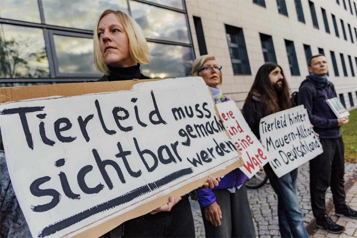 Freispruch RechercheaktivistInnen