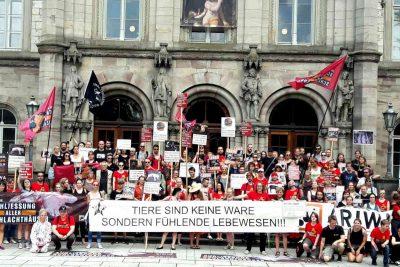 Demos für die Schließung aller Schlachthäuser Göttingen