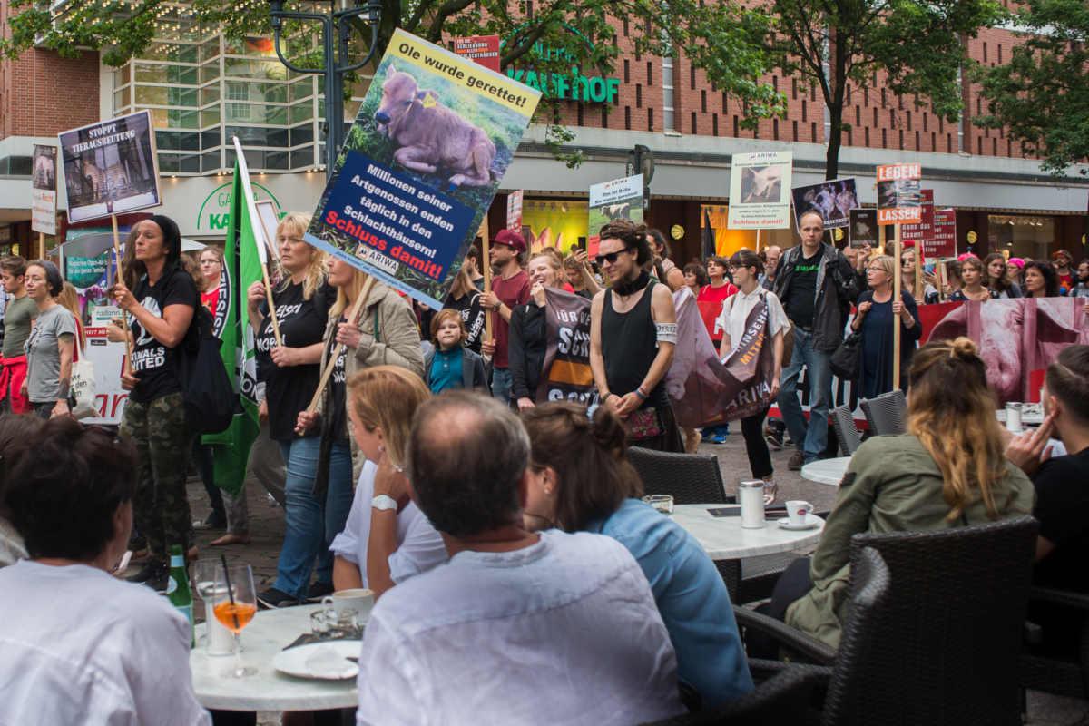 Demos für die Schließung aller Schlachthäuser Münster
