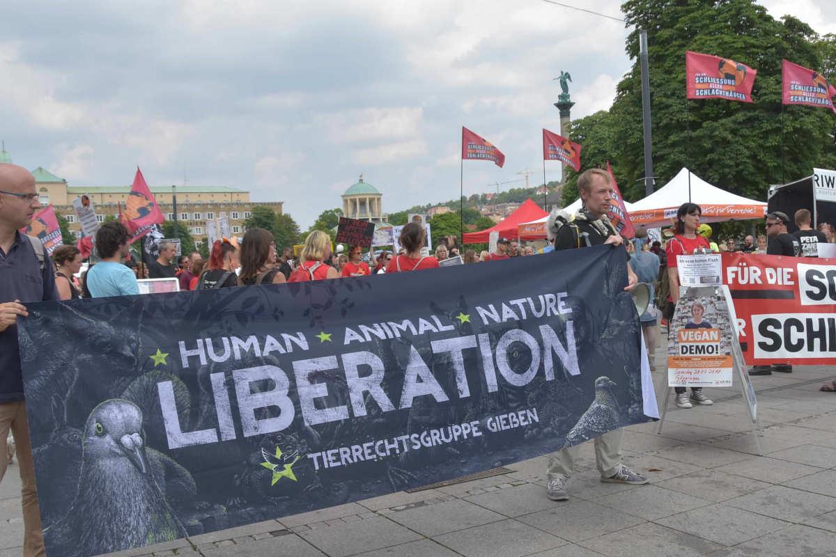 Demos für die Schließung aller Schlachthäuser Stuttgart
