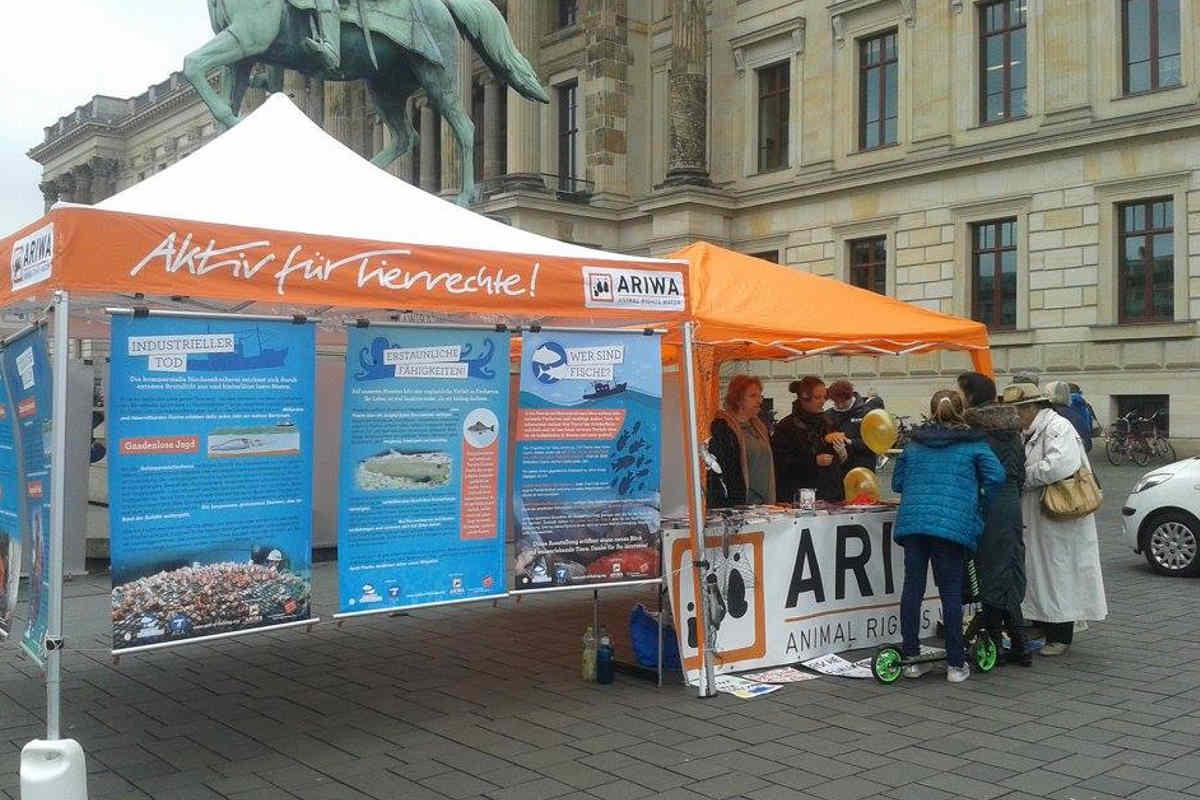 Welttag für das Ende der Fischerei Braunschweig