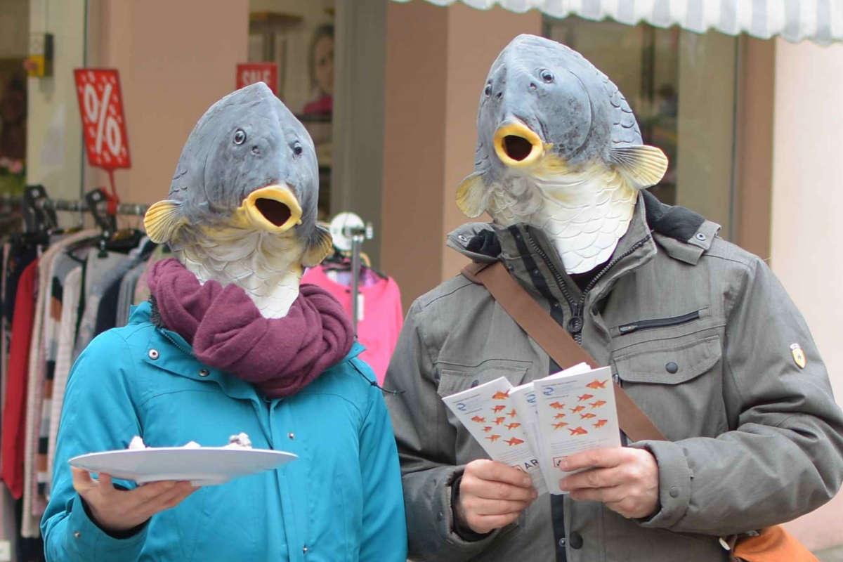 Welttag für das Ende der Fischerei Aalen