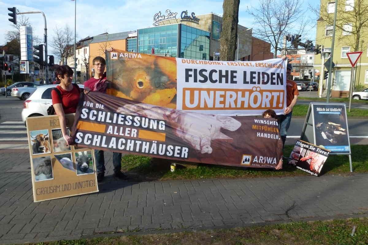 Welttag für das Ende der Fischerei Fulda