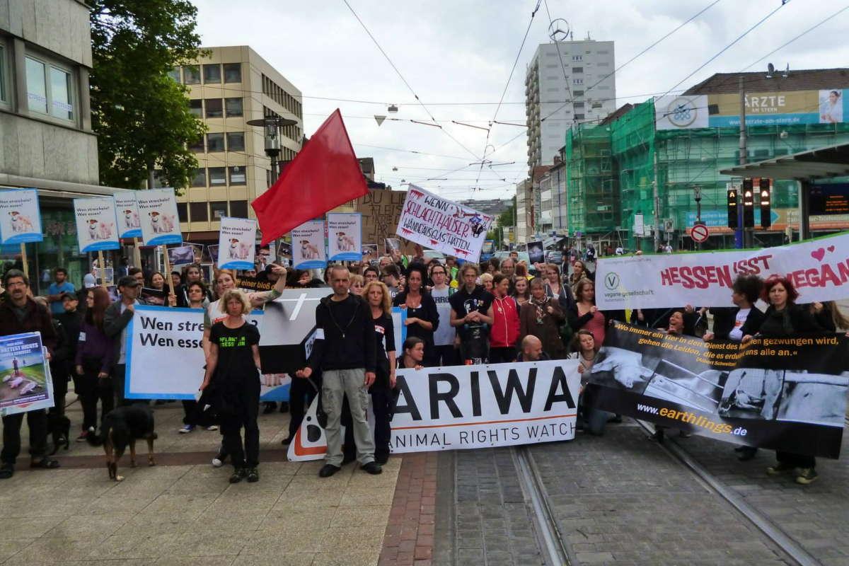 Demo zur Schließung aller Schlachthäuser Kassel