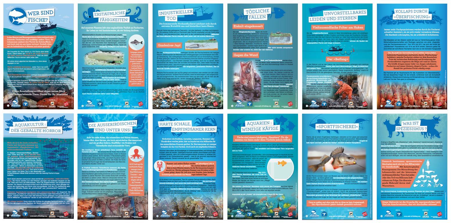 Ein neuer Blick auf Fische Ausstellung
