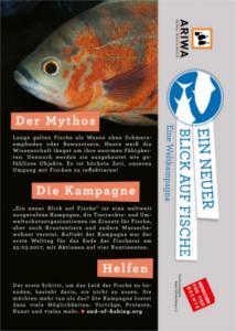 ARIWA-Flyer Fischkampagne