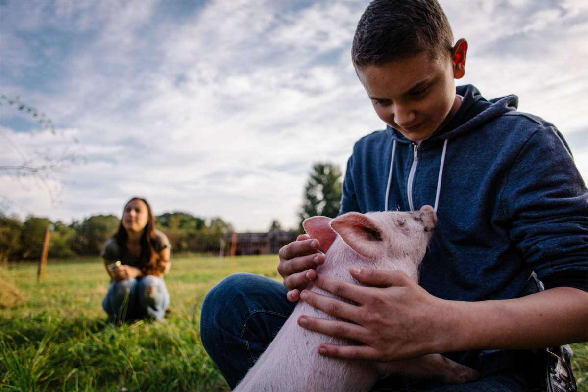 Kind mit Ferkel im Land der Tiere