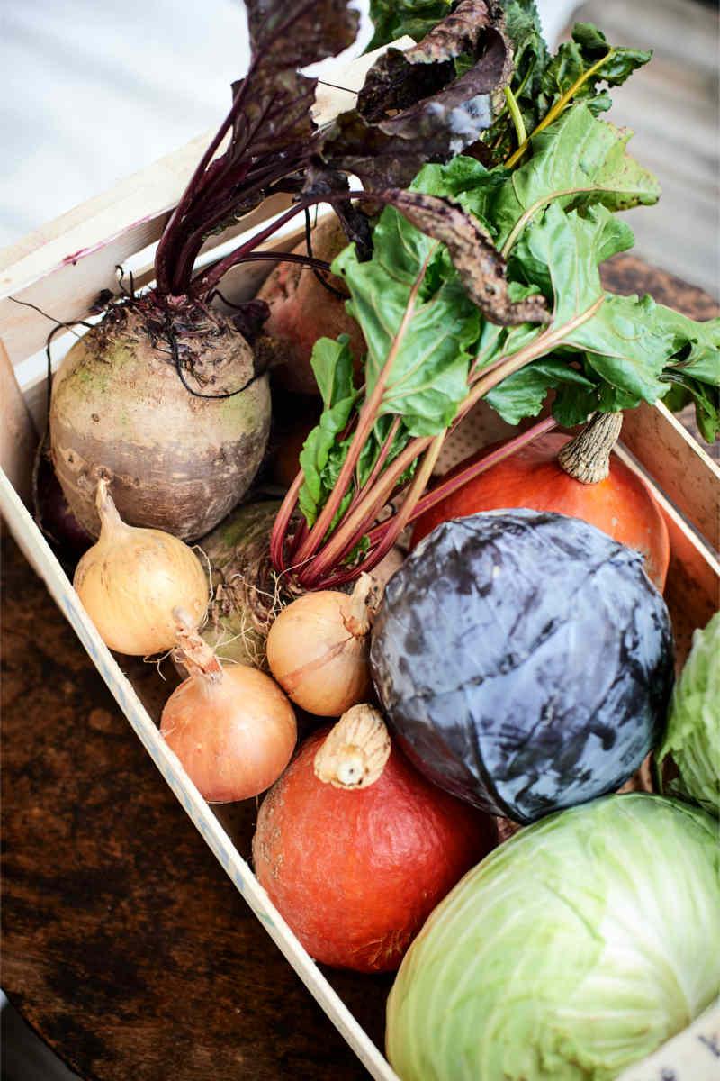 bio-veganes Gemüse Foto: Julia Thiele