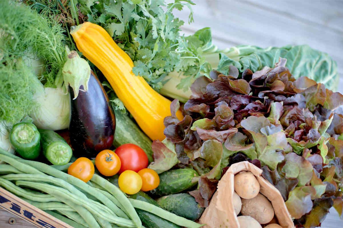 bio-veganes Gemüse Foto: Marta Nowiki