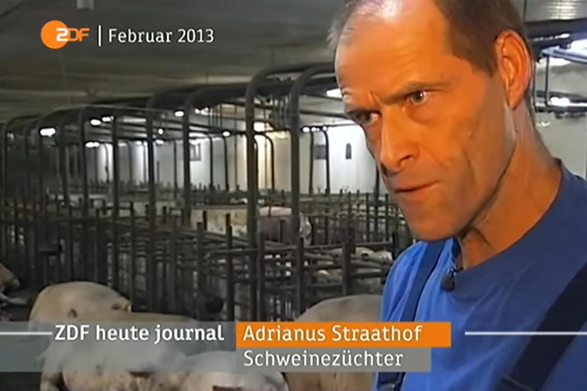 ariwa-2014-zdf-heutejournal-straathof