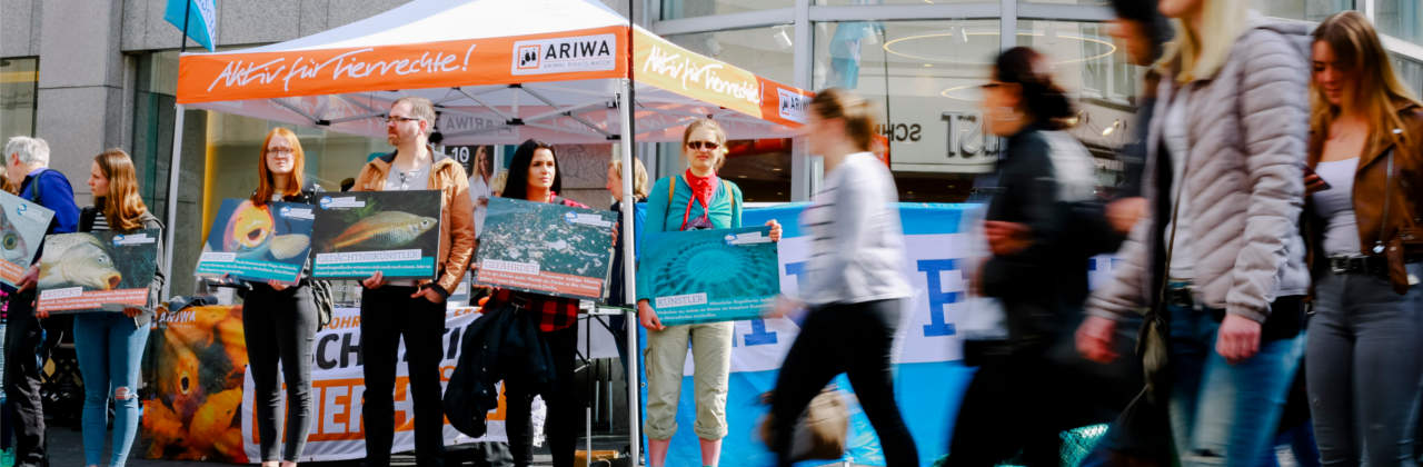 ARIWA-Infostand
