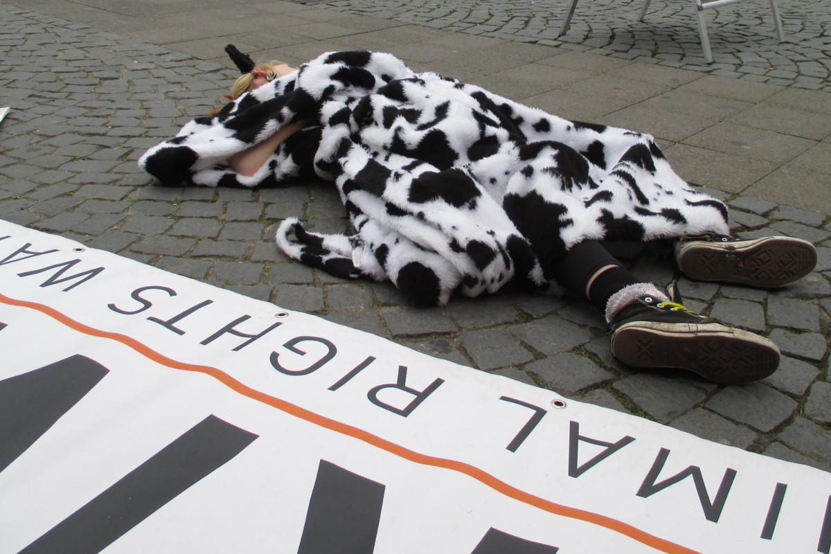 Sag Nein zu Milch 2014