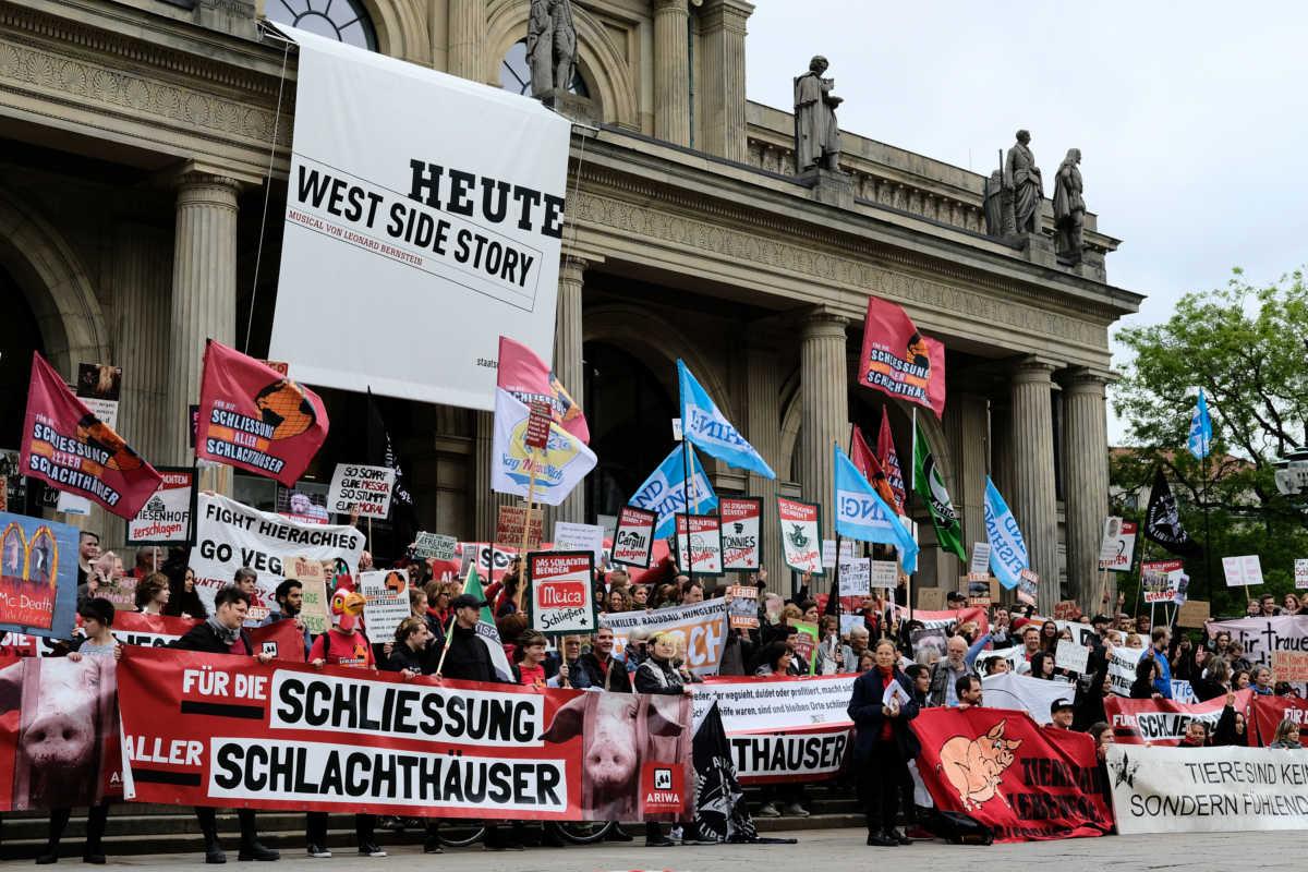 Schließung aller Schlachthäuser in Hannover 2019
