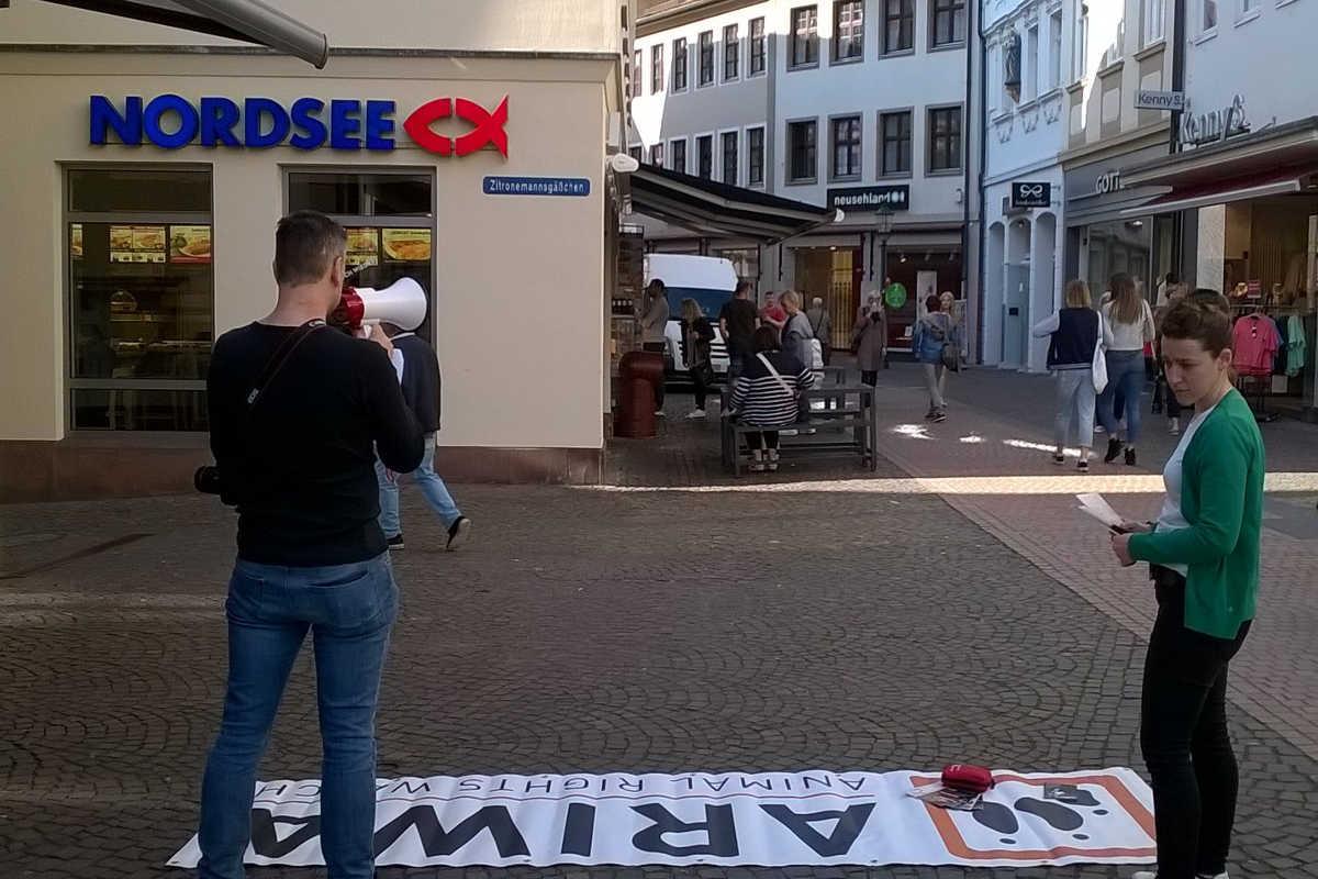 Welttag für das Ende der Fischerei in Fulda 2019