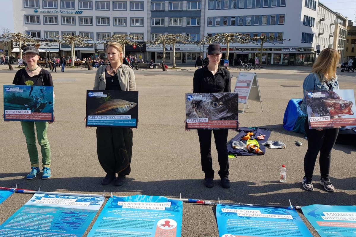 Welttag für das Ende der Fischerei in Kassel 2019