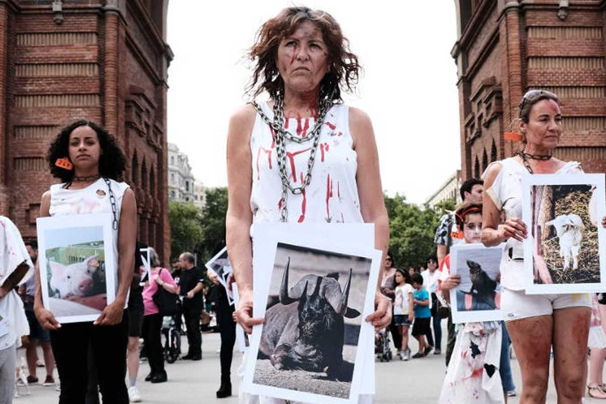 Schließung aller Schlachthäuser in Barcelona 2018