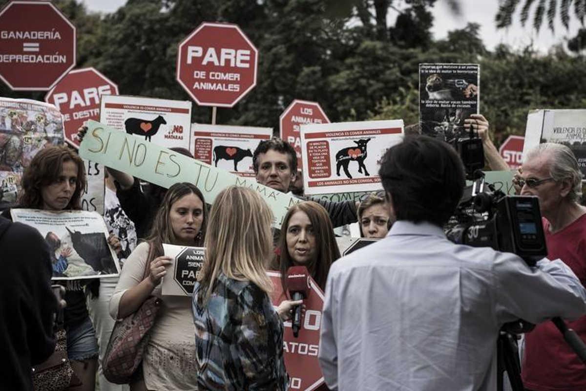 Schließung aller Schlachthäuser in Buenos Aires 2017