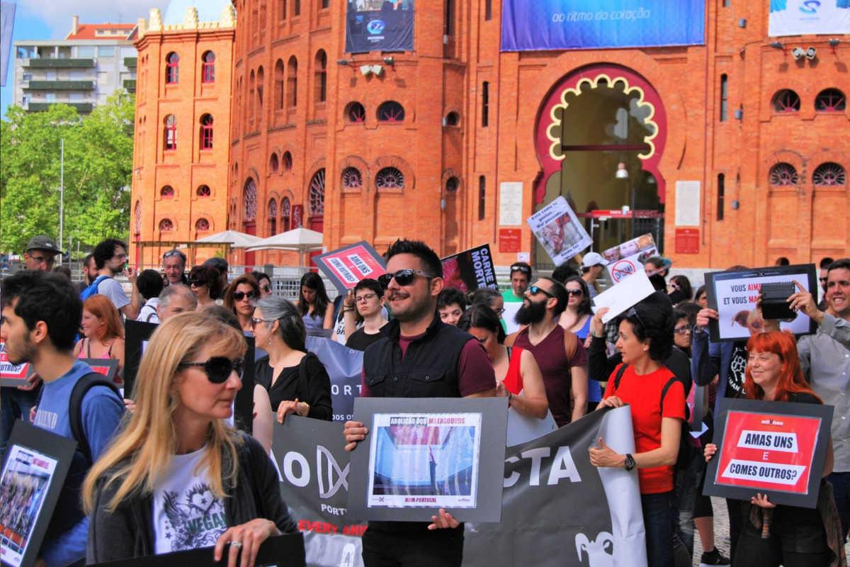 Schließung aller Schlachthäuser in Lissabon 2016