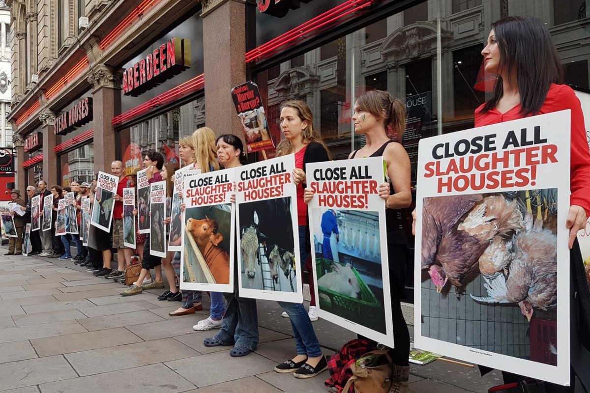Schließung aller Schlachthäuser in London 2016