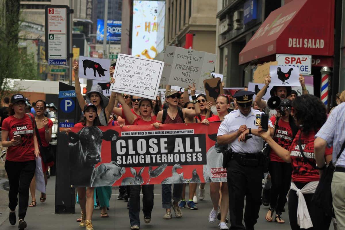 Schließung aller Schlachthäuser in New York 2018