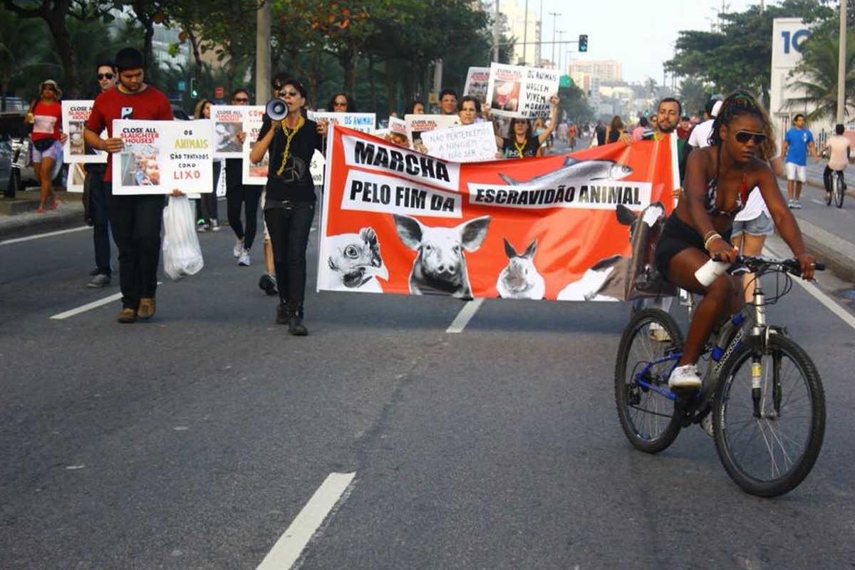 Schließung aller Schlachthäuser in Rio de Janiero 2015