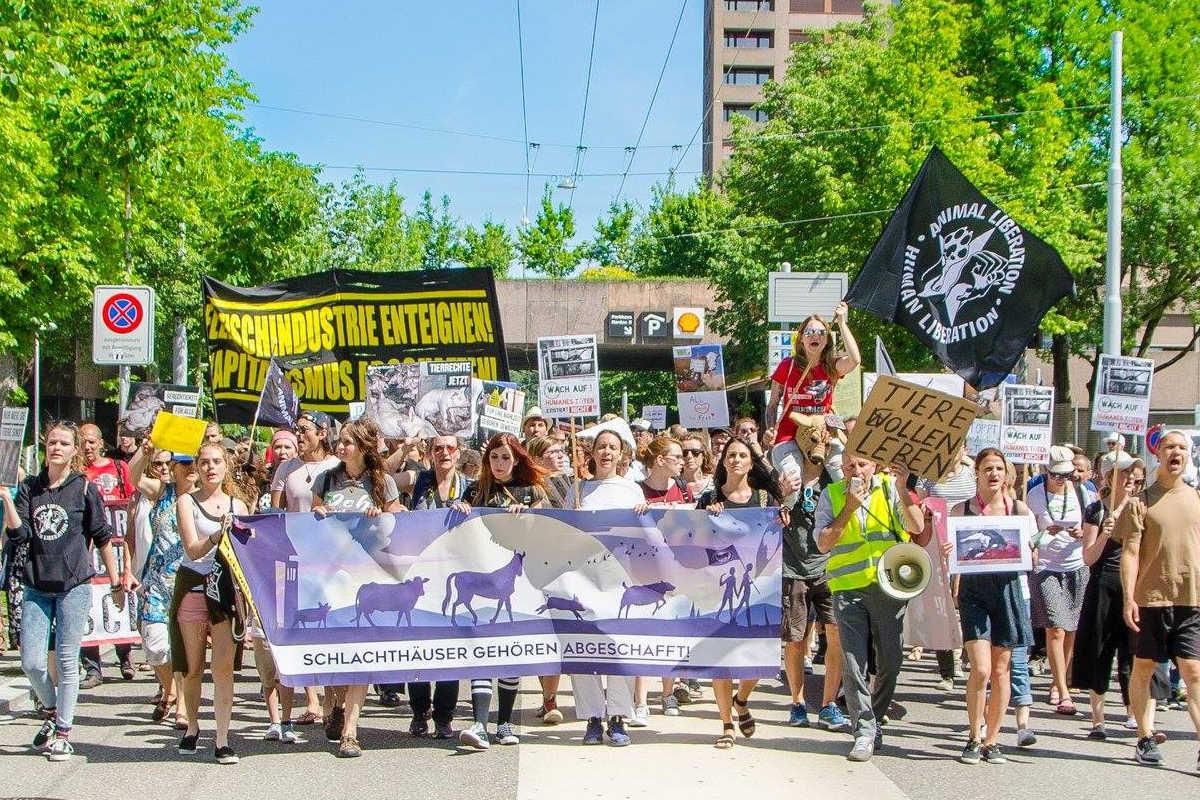 Schließung aller Schlachthäuser in Zürich 2017
