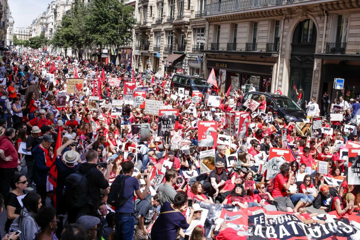Schließung aller Schlachthäuser in Paris 2018
