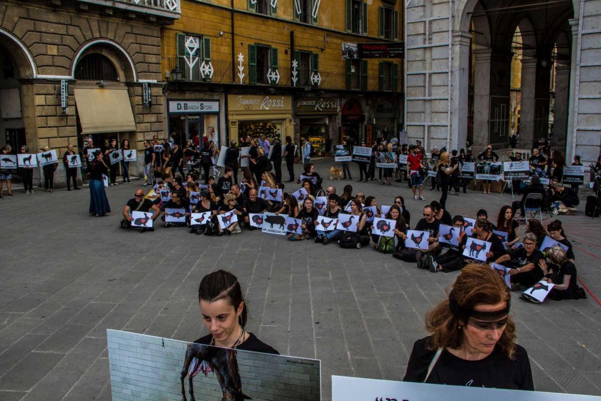 Schließung aller Schlachthäuser in Pisa 2018