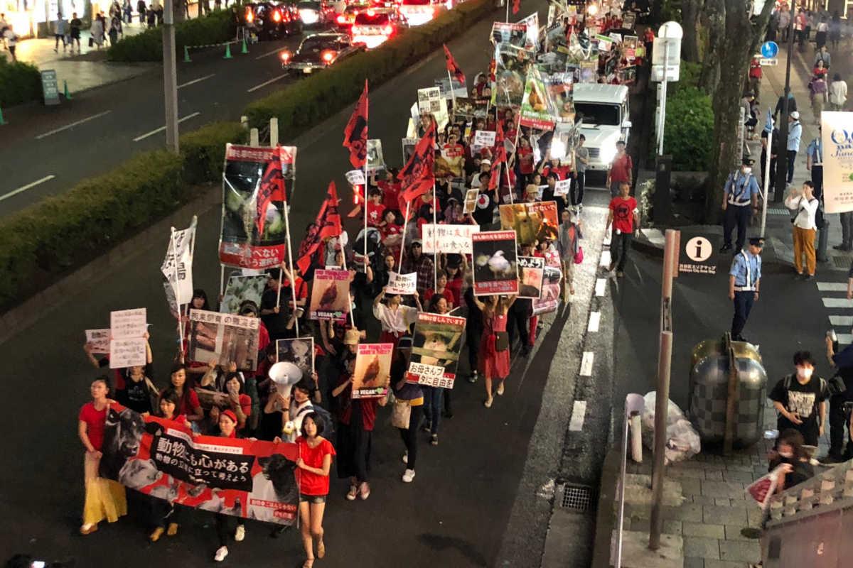 Schließung aller Schlachthäuser in Tokio 2019