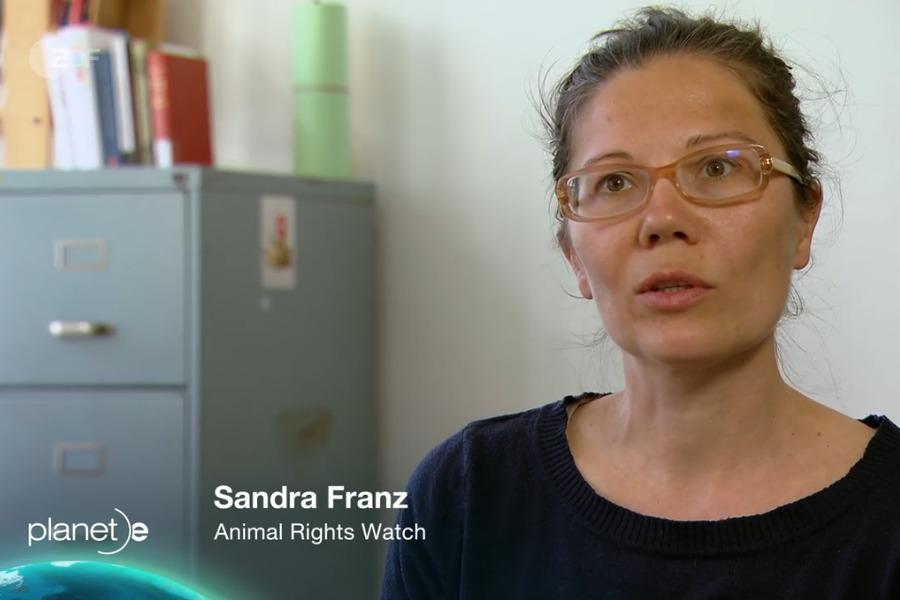 ZDF planet e