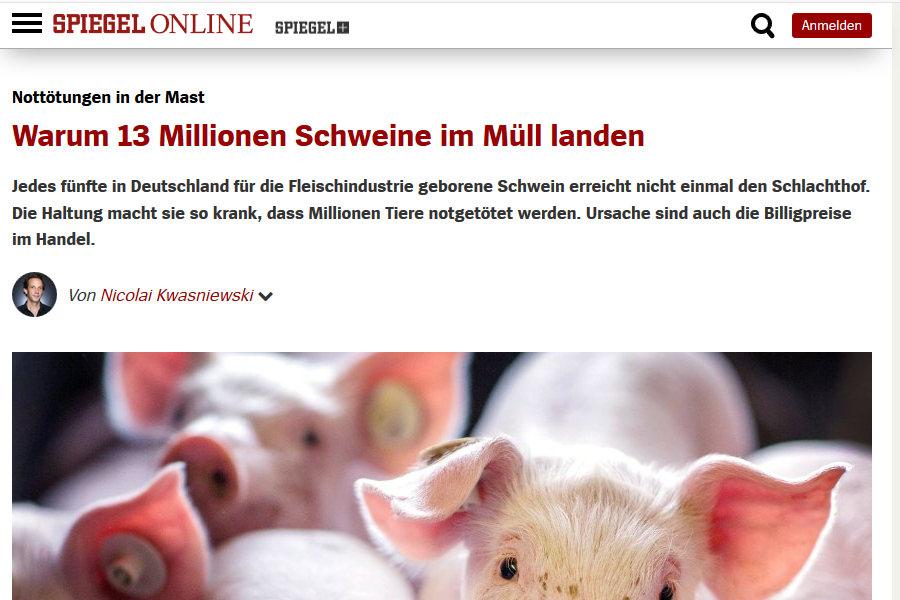 Spiegel online Artikel: Warum 13 Millionen Schweine im Müll landen