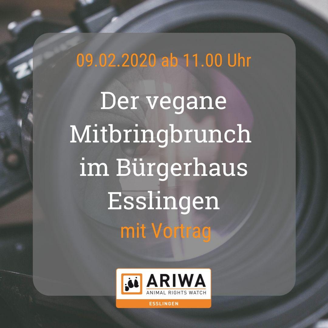 Vegan-Brunch mit Vortrag