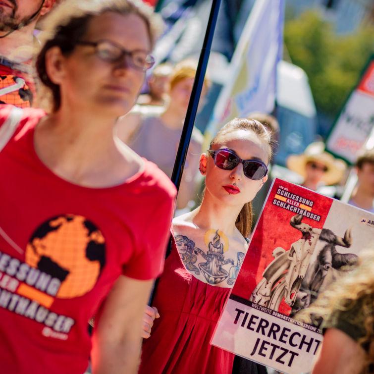 Schließung aller Schlachthäuser Chemnitz