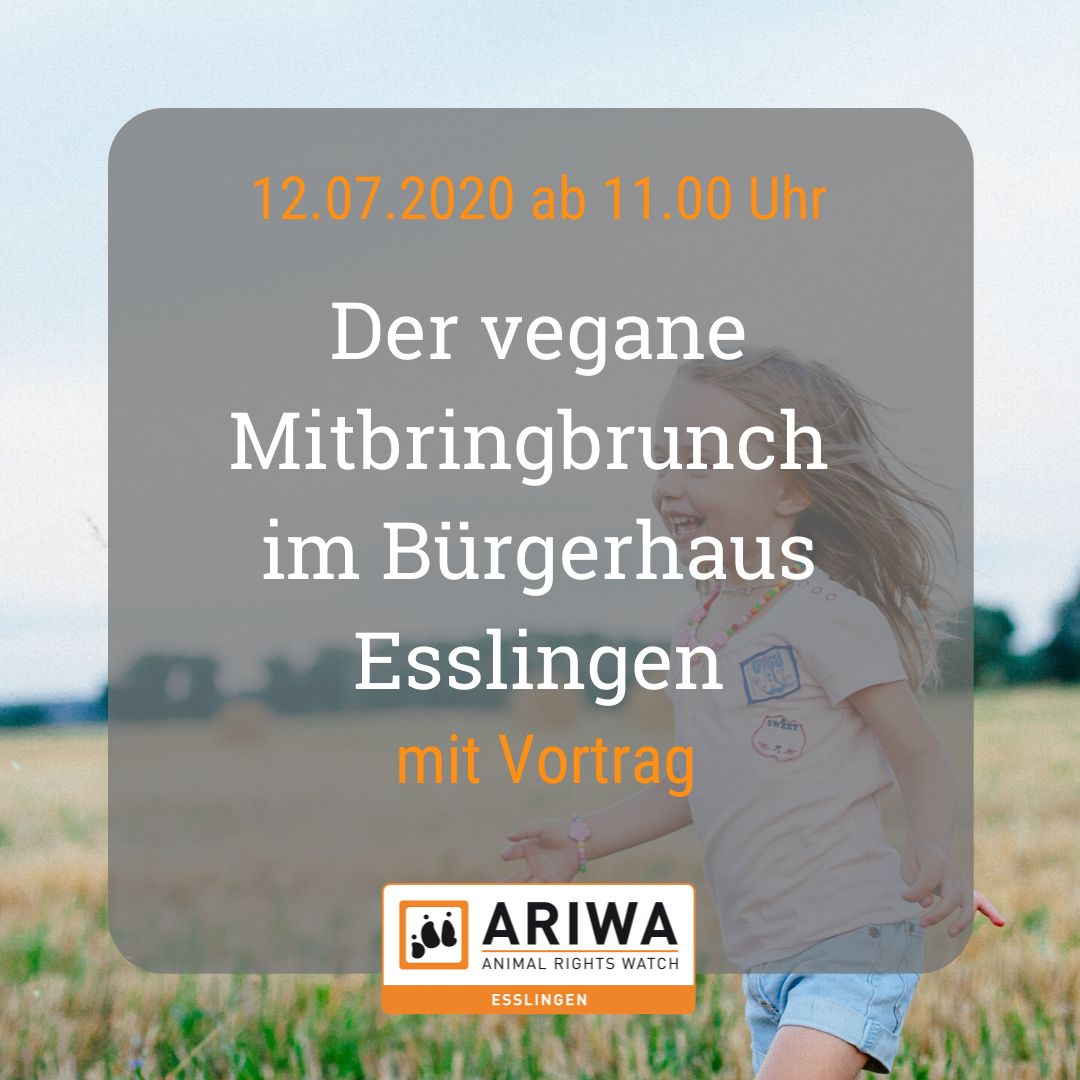 Digitaler Vegan-Brunch mit Vortrag