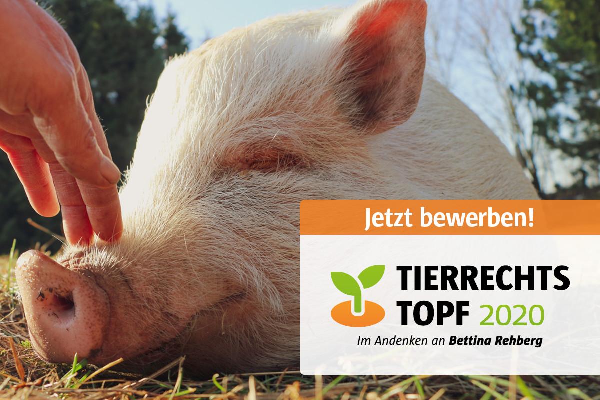 TierrechtsTopf 2020