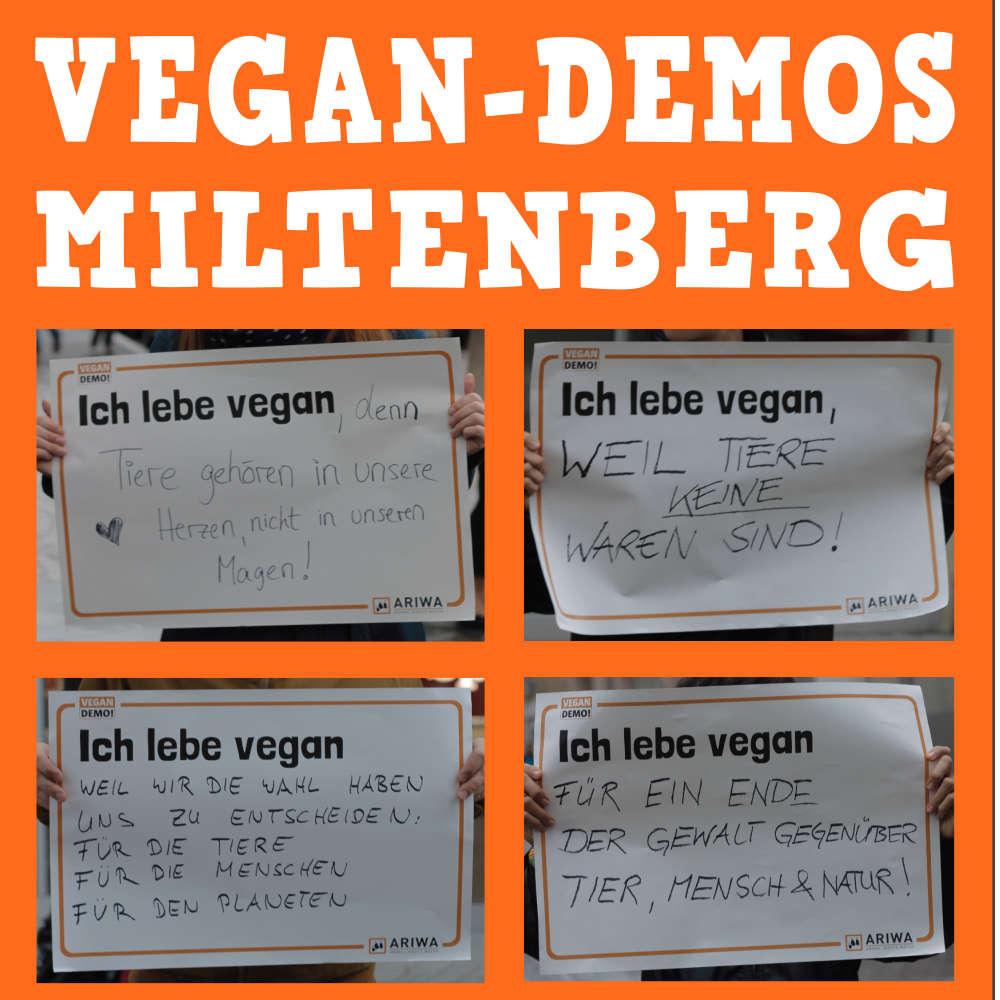 Vegan-Demos / Infostand in Miltenberg
