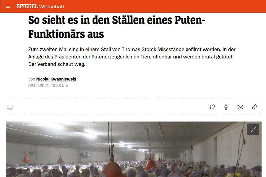 Spiegel Artikel