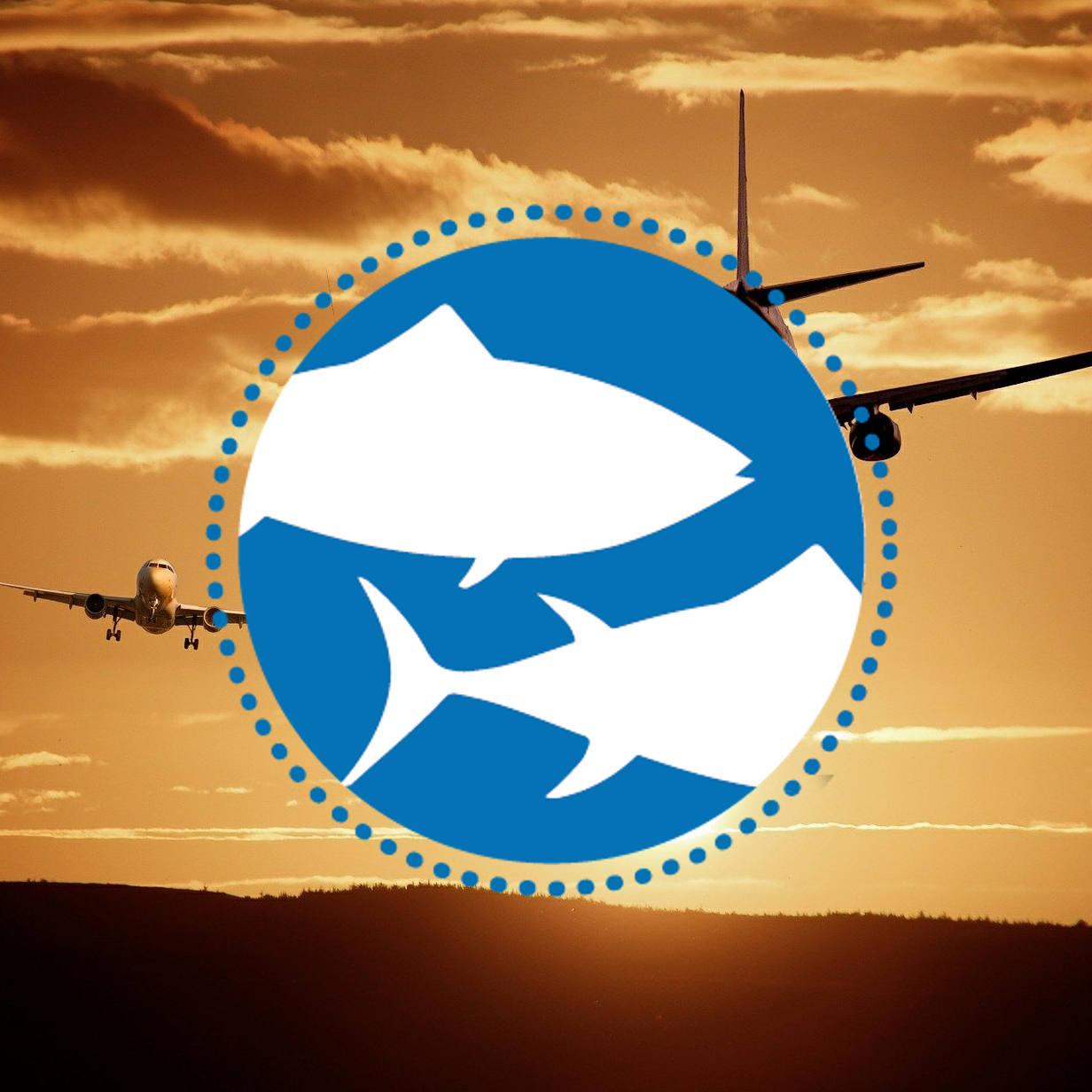 Welttag für das Ende der Fischerei - Frankfurt Flughafen
