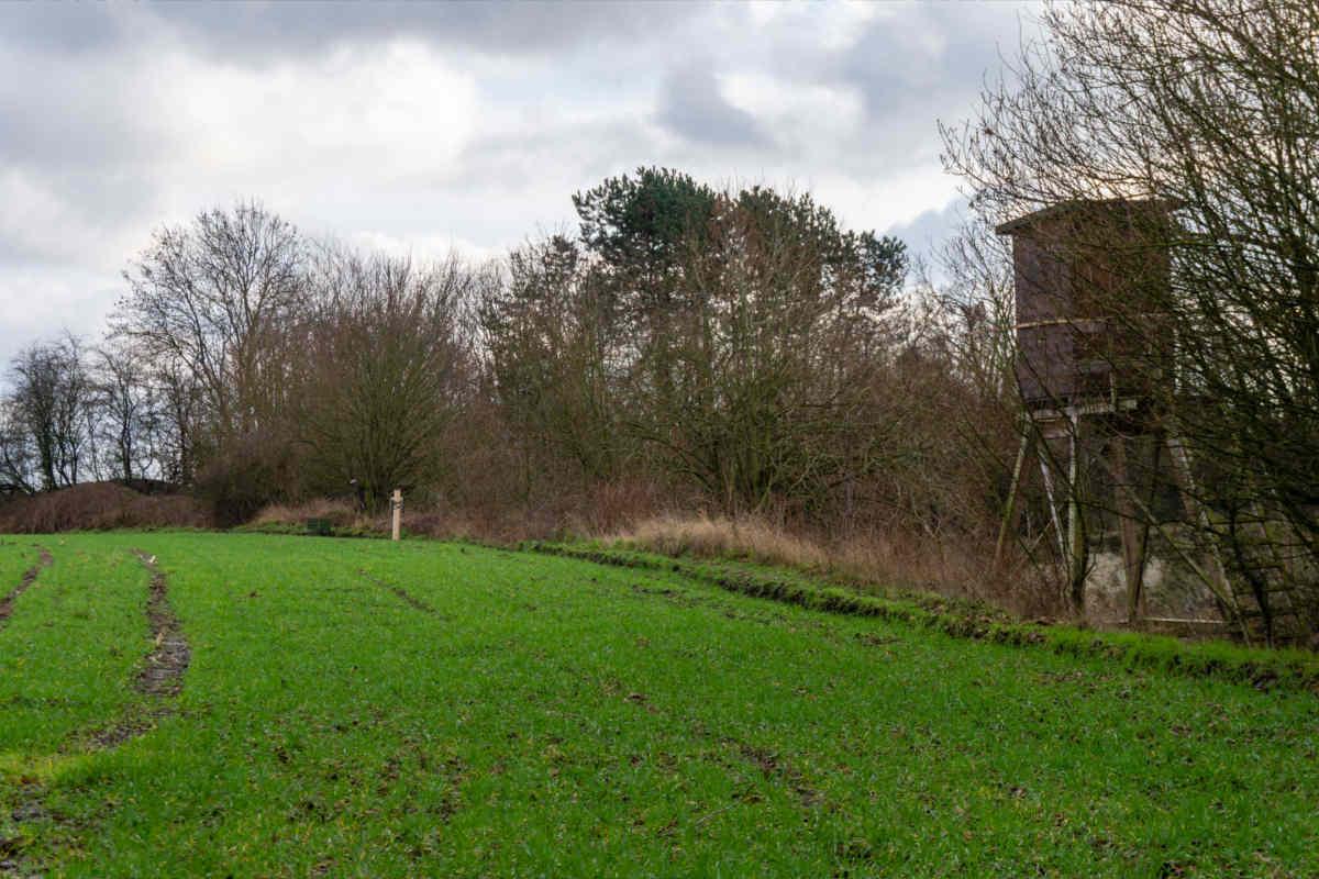 Facebookpost des Bauernverband Schleswig-Holstein