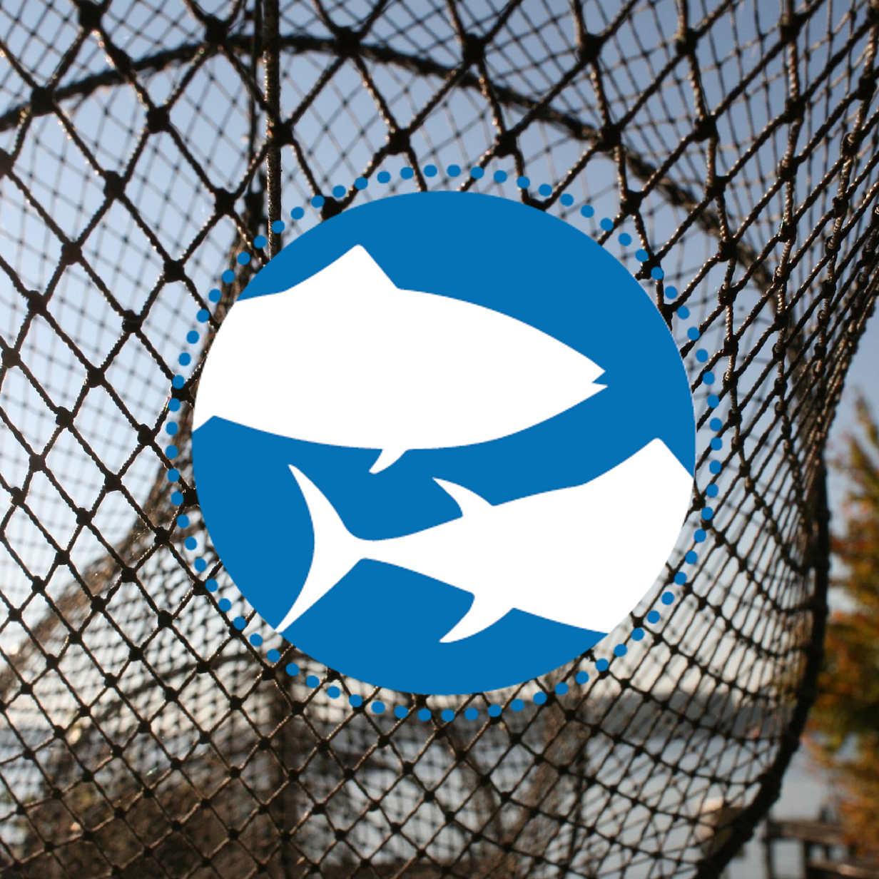 Welttag für das Ende der Fischerei – Bielefeld
