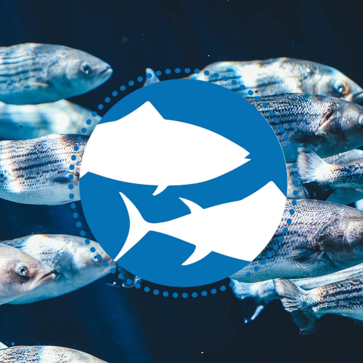 Welttag für das Ende der Fischerei - Hamburg