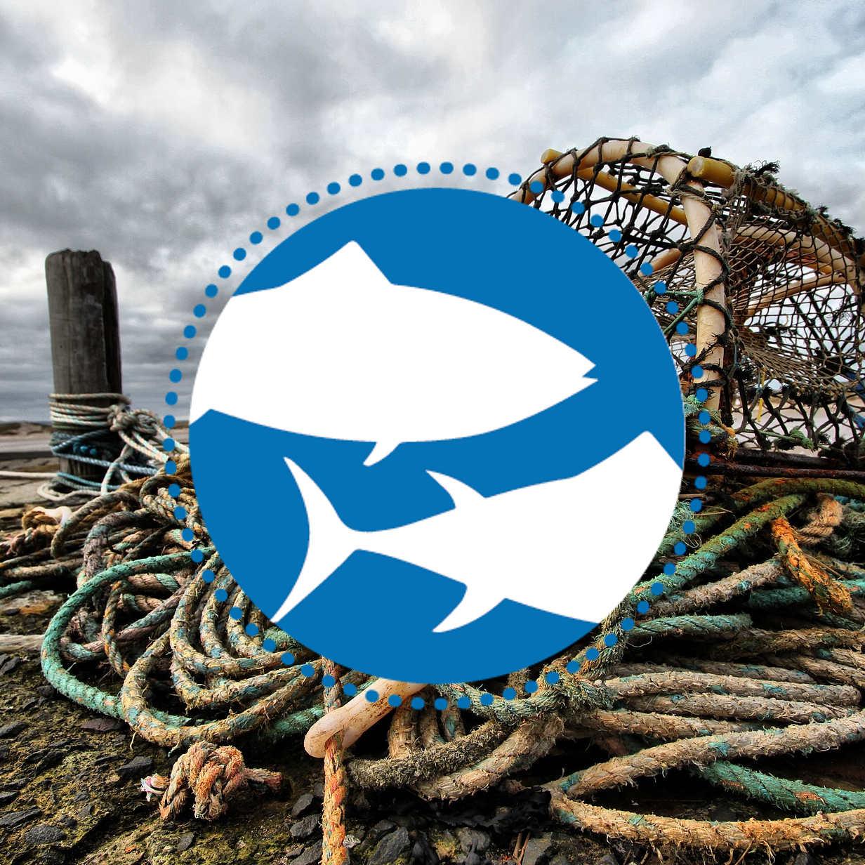Welttag für das Ende der Fischerei - Parchim