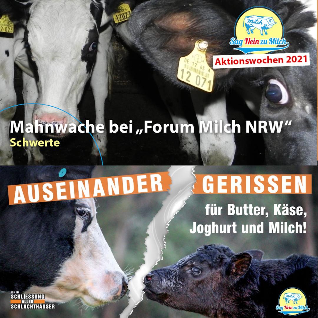 """Mahnwache beim """"Forum Milch NRW"""""""